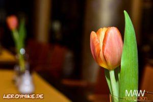 leroymike-eventfotograf-fulda-café-berlin-feiert-neueroeffnung-in-petersberg-06-2018-02-26-23-02-09-300x200