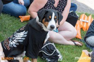 leroymike-eventfotograf-fulda-fulda-saints-feiert-den-meistertitel-2019-5-2019-07-21-15-01-30-300x200