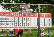 Landesliga Baseball Fulda Blackhorses - Darmstadt Whippets