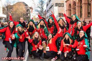 leroymike-eventfotograf-fulda-osthessen-rosenmontagsumzug-fulda-karneval-2017-08-2017-02-27-12-00-00-300x200