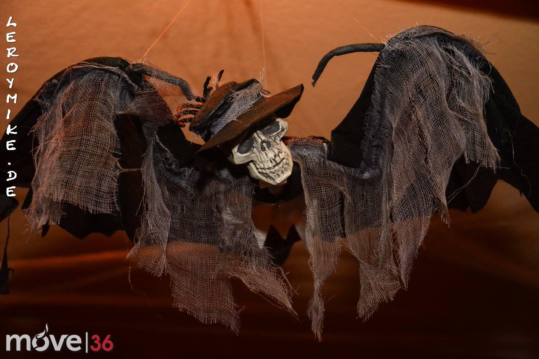 Halloween Party im Segment Fulda