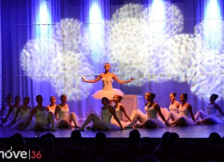Swanlake Project The Show StepsnStyles Danceschool