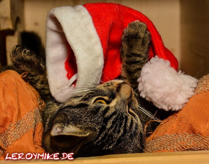 Weihnachten ist rum