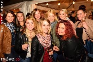 mike-kedmenec-fotograf-fulda-weinfest-2015-in-fulda-mit-soundaholics-04-2015-09-04-23-27-00-300x200